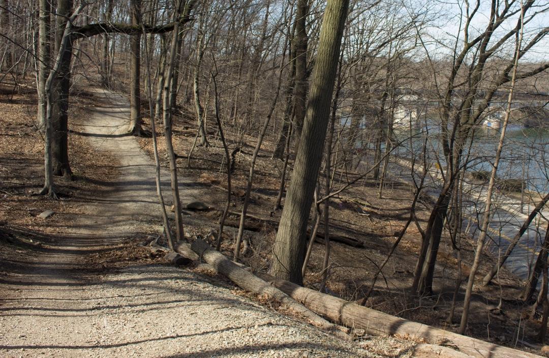 Boxer's Trail East Fairmount Park